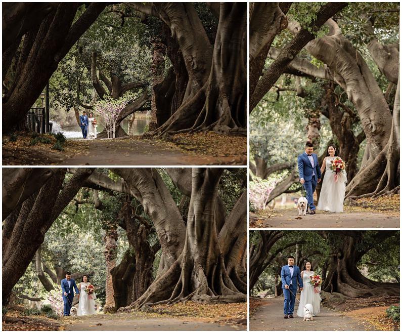 perth zoo wedding, Perth Zoo Wedding Western Australia