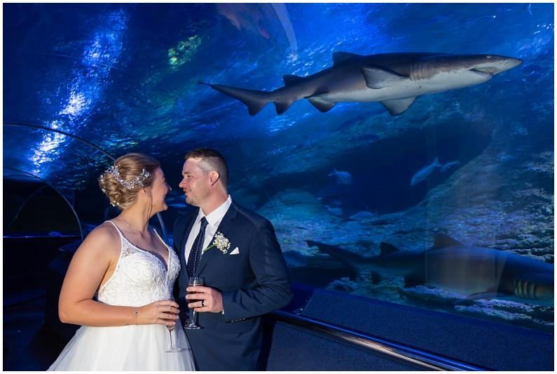 aqwa underwater aquarium wedding