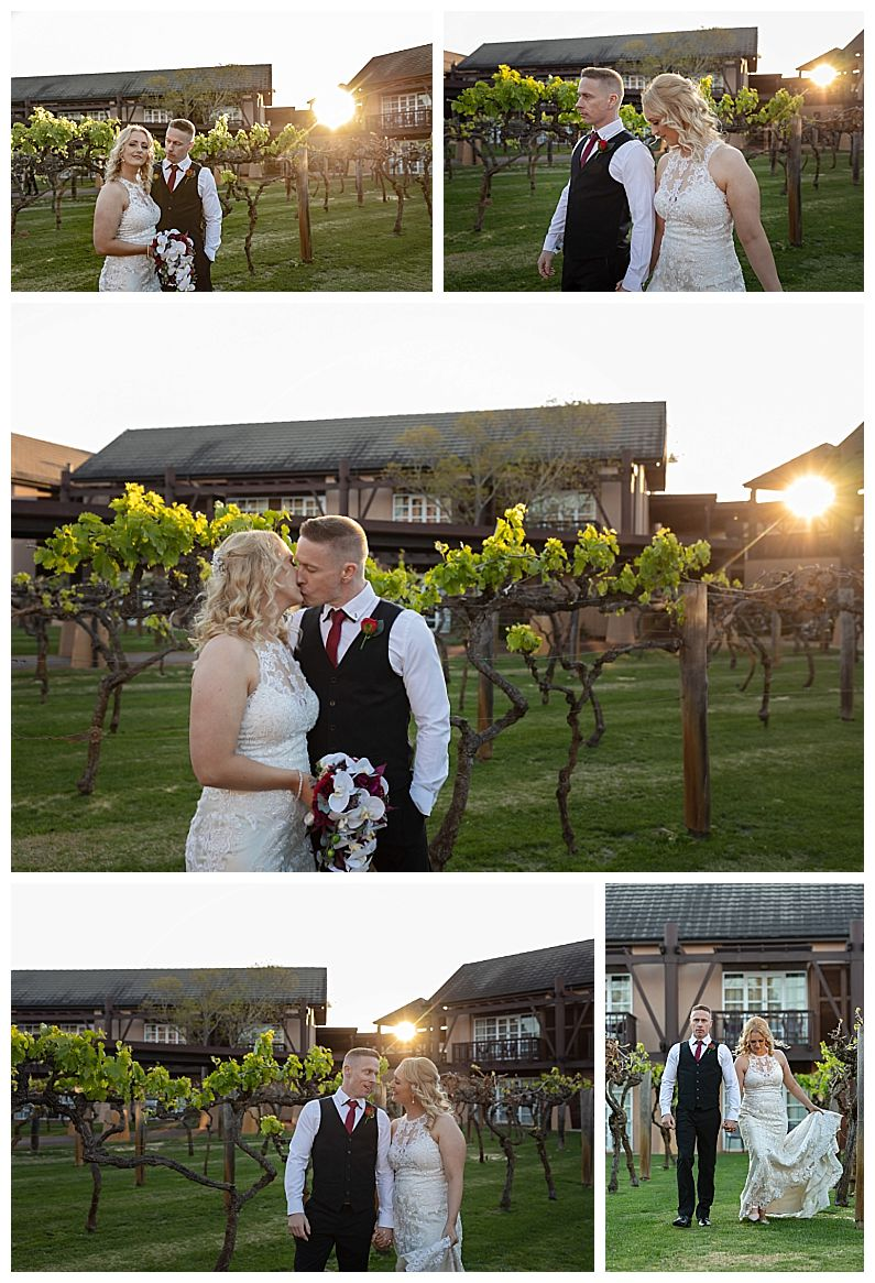 The Vines Resort - Bridal Party Photographs