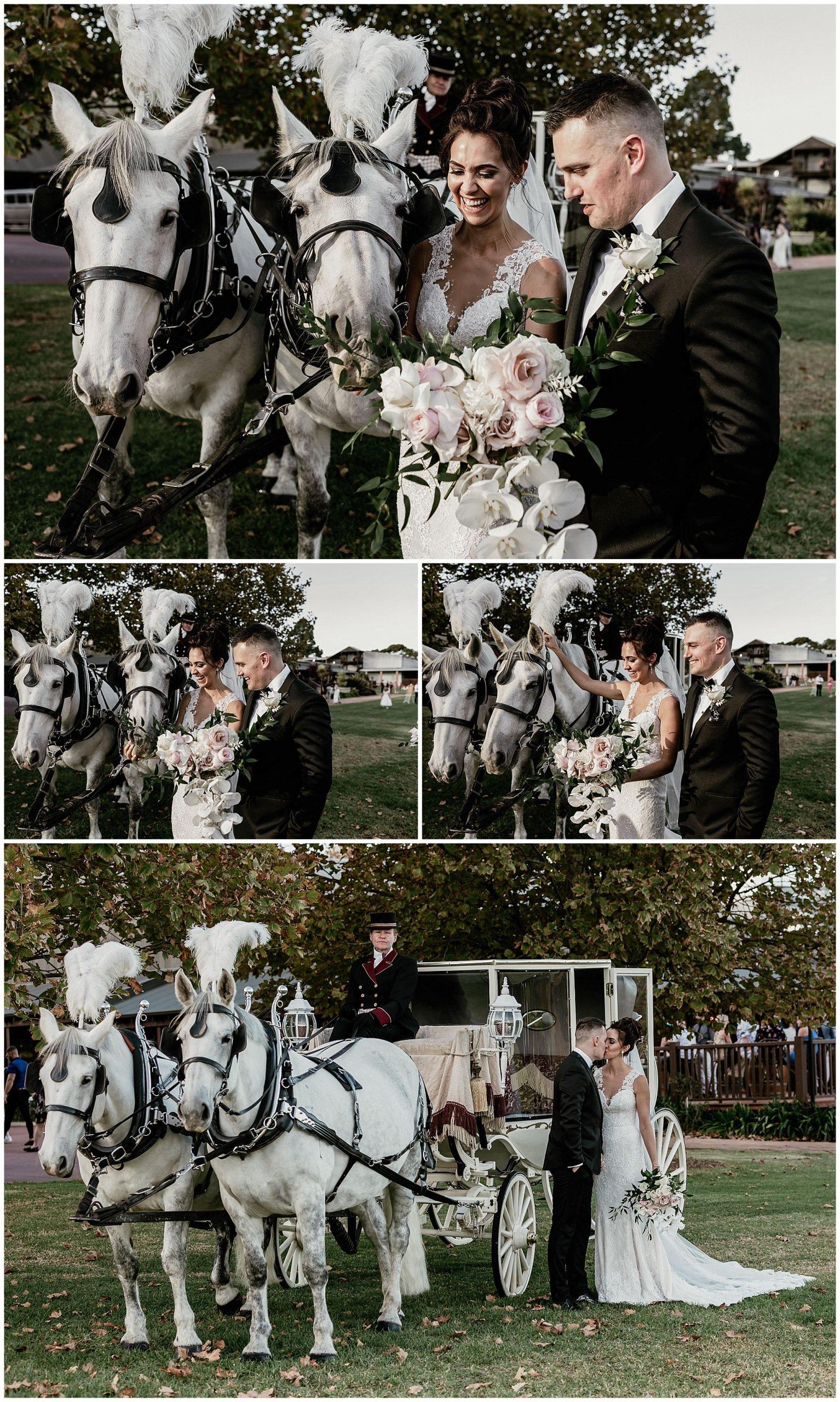 wedding-photographs-sandalford-winery